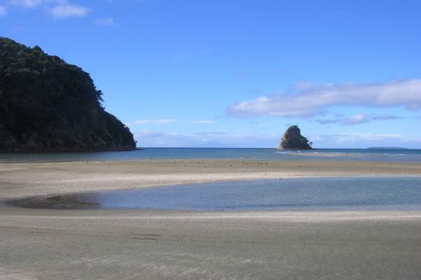 View from Waiwera